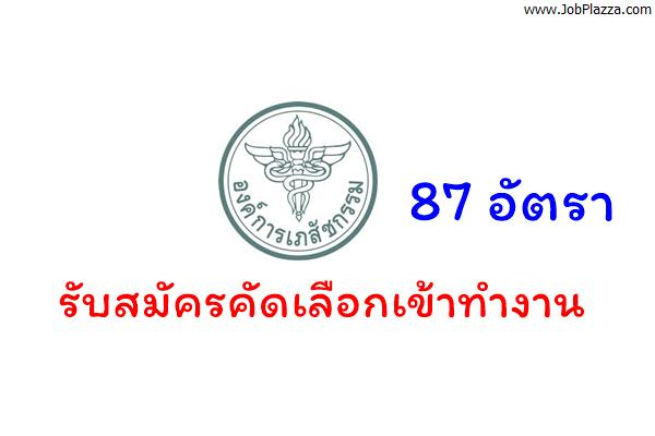 องค์การเภสัชกรรม รับสมัครคัดเลือกเข้าทำงาน 87 อัตรา